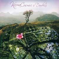Karmacosmic & Darshini - CD - Sat Chid Ananada