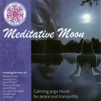Various Artists (Spirit Voyage) - CD - Meditative Moon