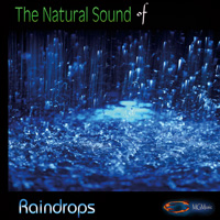 Medwyn Goodall: CD The Nature Sounds of RAINDROPS
