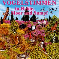 Vogelstimmen in Moor Heide und Sumpf - CD - Vogelstimmen in Heide, Moor und Sumpf
