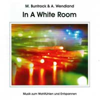 Martin Buntrock & Arno Wendland: CD In A White Room