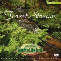 Sounds of the Earth: CD Forest Stream (Audio-DVD, Surroundsound)