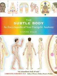 Cyndi Dale: Buch The Subtle Body (Buch)