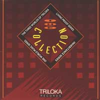 Sampler: Triloka - CD - Collection
