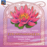 S. Sharamon & Merlin's Magic - CD - Einverstanden Sein