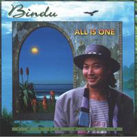Bindu - CD - All is One