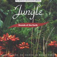 Sounds of the Earth - David Sun: CD Jungle