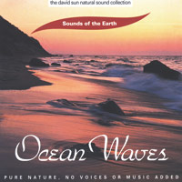 Sounds of the Earth - David Sun - CD - Ocean Waves