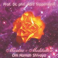 Emese Tepperwein & Paul: CD Om Namah Shivaya