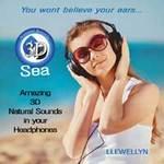 Llewellyn - CD - You wont believe your ears...3D Sea