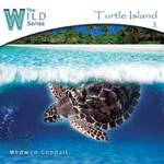 Medwyn Goodall: CD Turtle Island