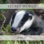 Neil H - CD - Secret World