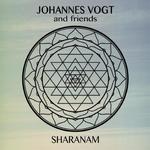 Johannes Vogt: CD Sharanam