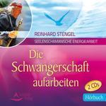 Reinhard Stengel - CD - Die Schwangerschaft aufarbeiten