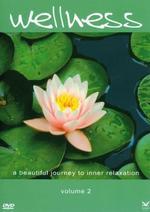 Various Artists (Wellness Music) - CD - Wellness Vol. 2 (DVD)
