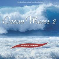 Sounds of the Earth  CD Ocean Waves Vol. 2