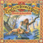 David Arkenstone - CD - Celtic Book of Days