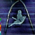 Shiv Kumar Sharma - CD - Sampradaya