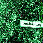 Hans Roedelius Joachim: CD Roedeliusweg